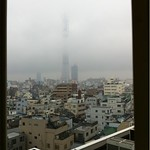 @RyosukePhoto こっちも今日は雨。鉛色。スカイツリーも見えないです