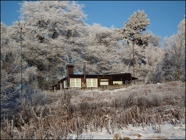 Carbeth Huts Winter