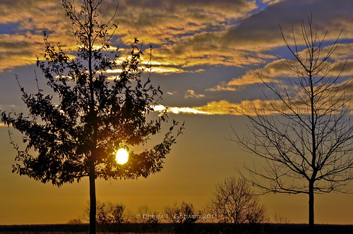 sky clouds sunrise al daphne nikond90 debbiegodard