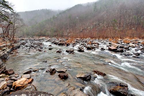 trees mist mountains water rain fog river rocks goshenpass