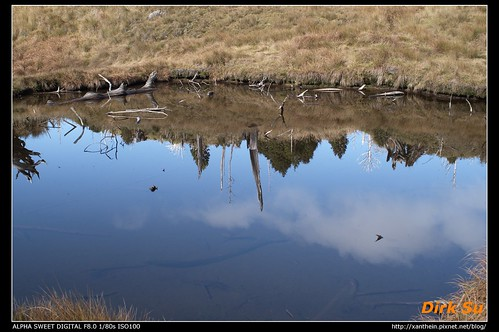 28mm taiwan d5d 加羅湖