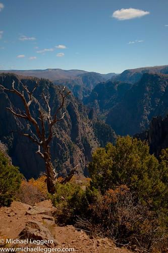 park trees mountain black nature clouds landscape colorado canyon national gunnison