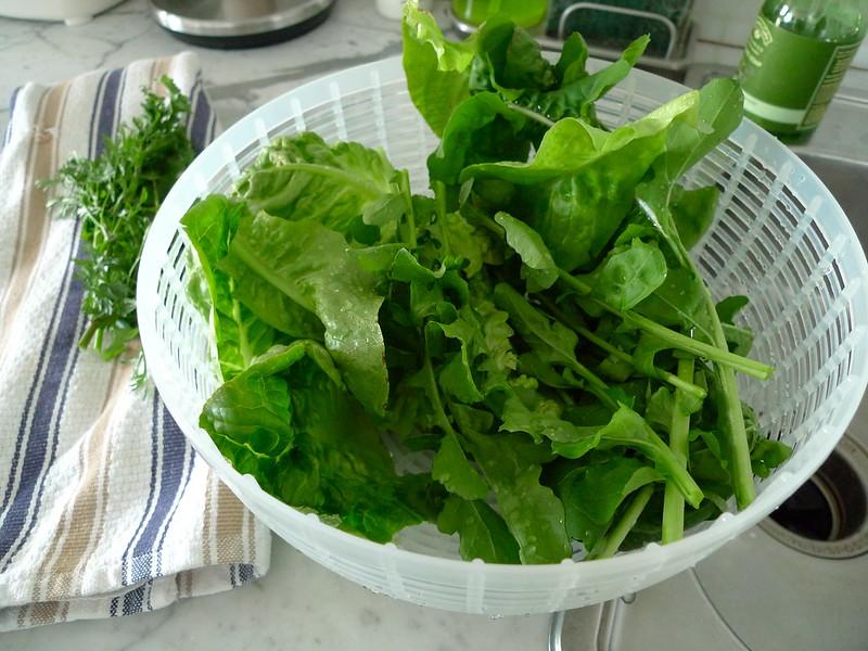 Arugula & herbs from my garden!