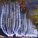 東京ミッドタウン シャンゼリゼ・イルミネーション2010 Champs-Elysees Illuminations at the Tokyo Midtown