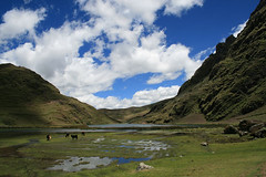 Mon, 17/03/2008 - 11:31 - Upland lake, Andean Potato Park, Peru  More information: biocultural.iied.org