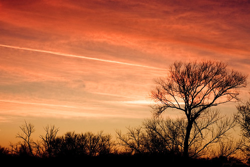 trees winter sunset sky orange snow nature colors minnesota silhouette clouds digital canon landscape rebel 50mm december view walk branches sunsets hike mississippiriver twigs 2010 xsi elkriver jeanamariephotography