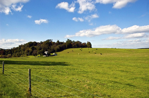 county chris green photography md nikon kaskel cows farm d70s maryland pasture fields carroll