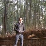 Day 7 - Arashiyama (嵐山)