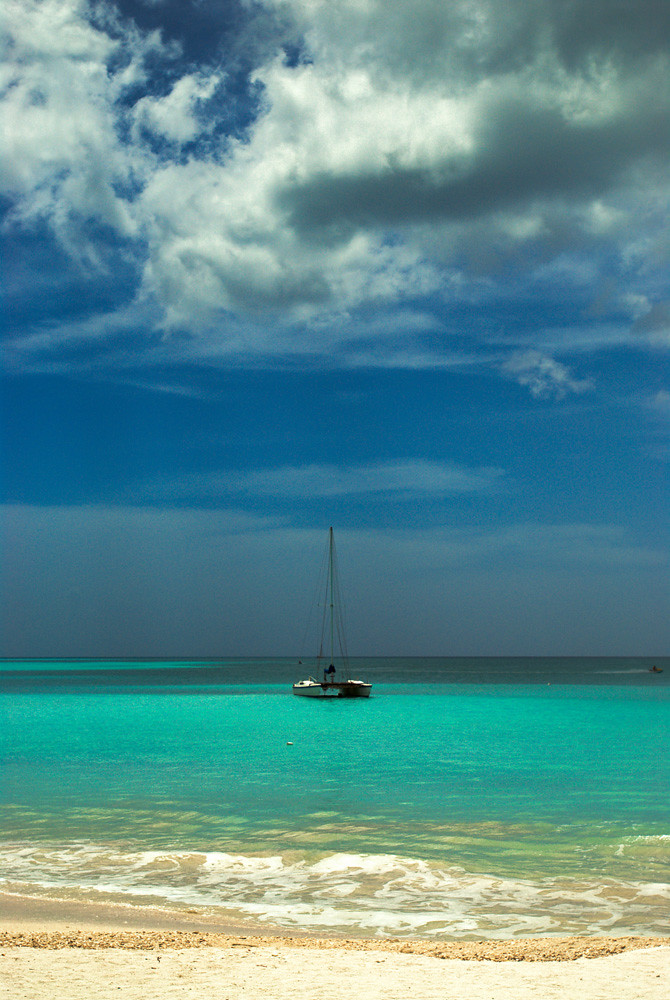 Sailboat Sail Boats Beach Palm Tree Caribbean Vacation Des Flickr