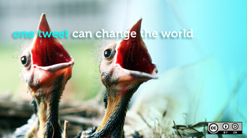 One tweet *can* change the world | by opensourceway
