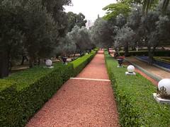 Universität Haifa