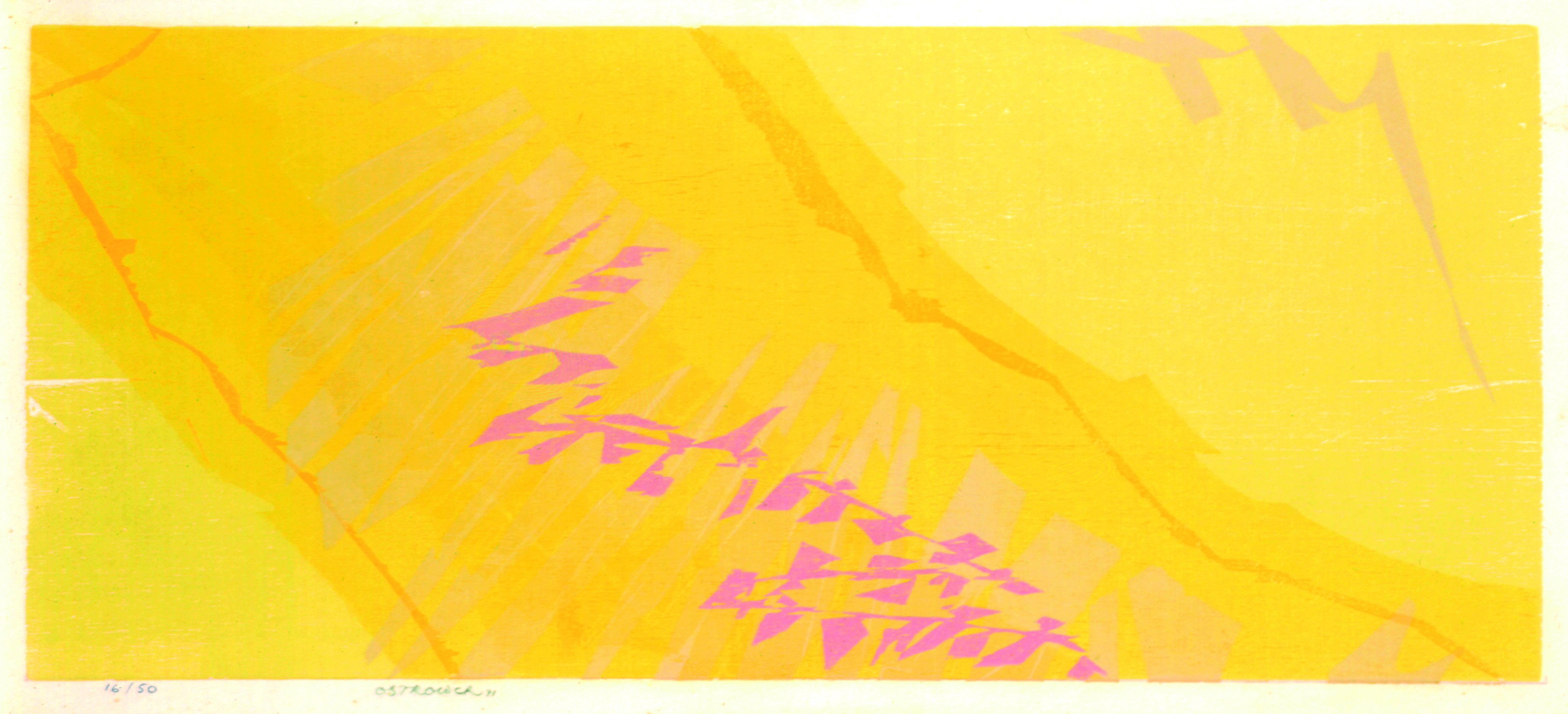Gravura 7103 Autor: Fayga Ostrower Ano: 1971 Técnica: Xilogravura (16/50) Dimensão: 30cm x 60cm