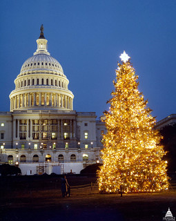 1980 U.S. Capitol Christmas Tree | by USCapitol