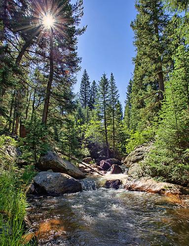 sun nature water creek forest landscape golden nikon colorado stream co sunburst rays burst hdr teller fourmilecreek fourmile clff d700 snshdr