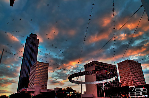 sunset building birds nikon texas houston sunsets places hdr williamstower 2011 d5000 nikond5000