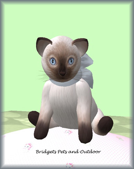 Animated 3D Object - Second Life