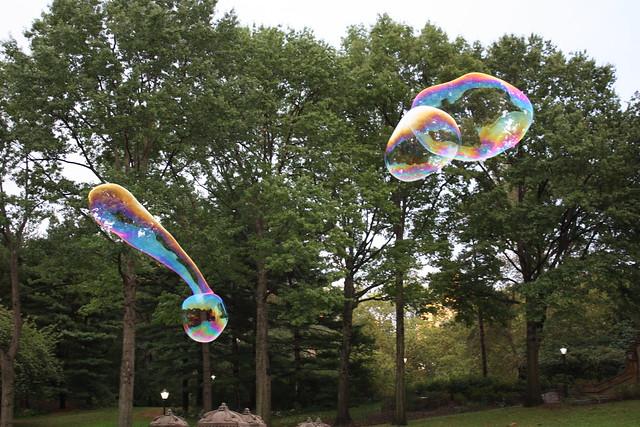 Bubble Shapes