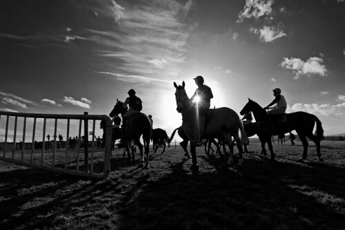 ireland sunset horse sun silhouette race canon fence eos jump sigma national 7d wicklow 1020 equine hunt tinahely
