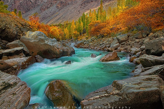 Colors Brust.. | by M Atif Saeed