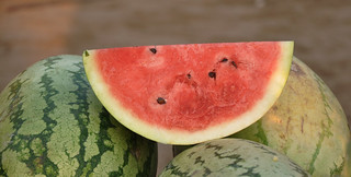 WaterMelon   by I for Detail.