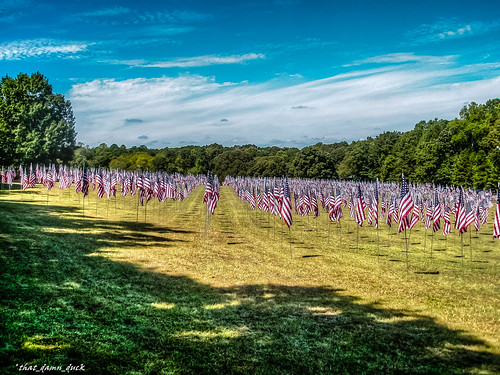 americanflags graves militarygraves cemetery heros