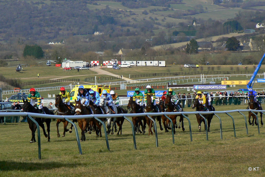 How To Bet On The Cheltenham Festival