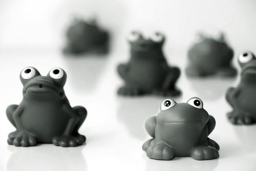 Frog Brigade