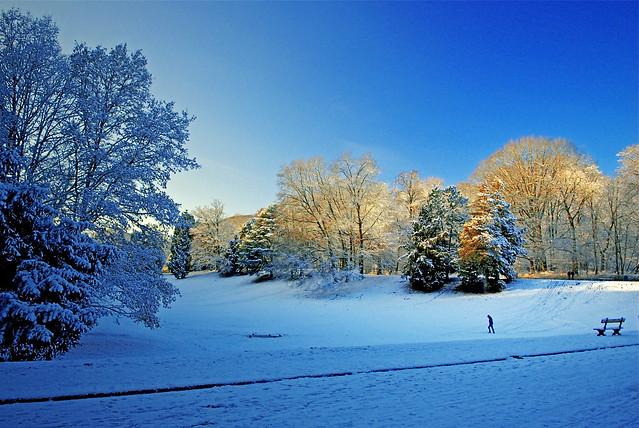 The Solitude of Winter