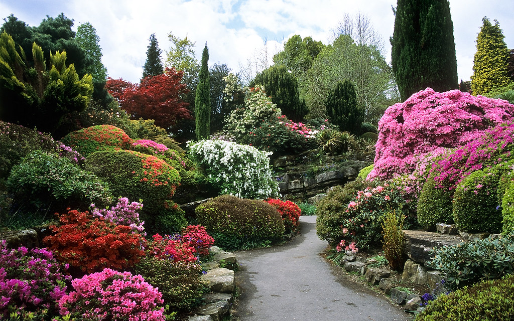 Rock Garden At Leonardslee Gardens West Sussex Uk Leon Flickr