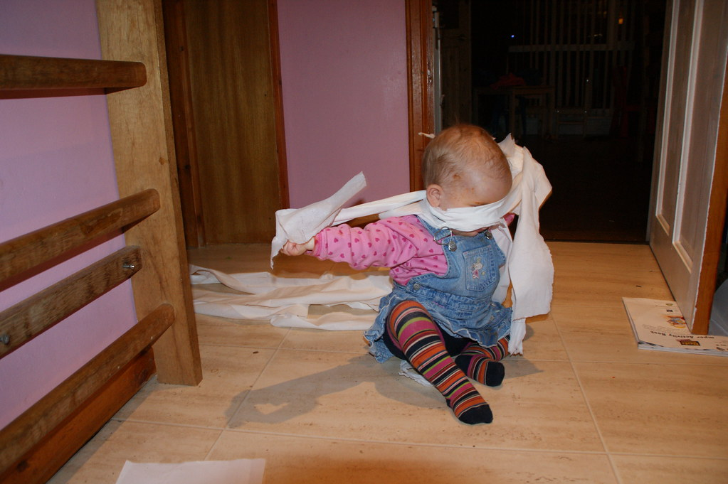 Image result for toilet rolls baby