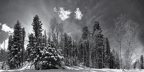 vacation blackandwhite bw white snow clouds canon blackwhite colorado 21 pano panoramic co dxo f8 steamboatsprings blackdiamond autopano autopanopro canonefs1755mmf28isusm 40d flickrelite canon40d silverefexpro autopanogiga2 delaphotography