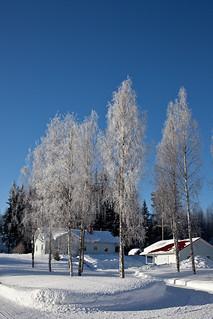 Greetings from Snowland | by Jonne Naarala