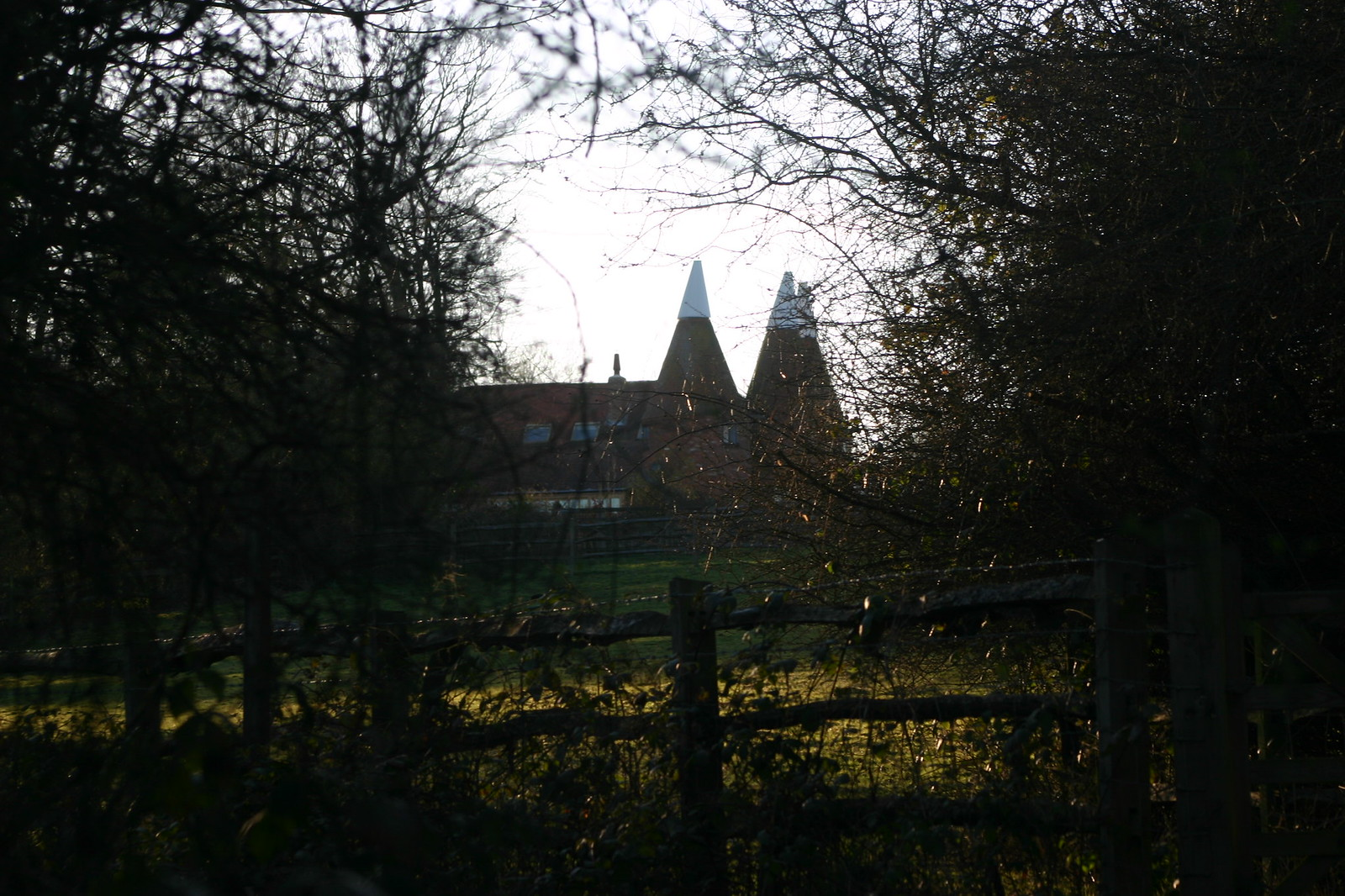 Oast through trees