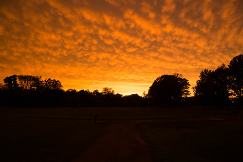 canonef24105mmf4lisusm silhouettes dusk sunset cloud princeton newjersey unitedstates golf