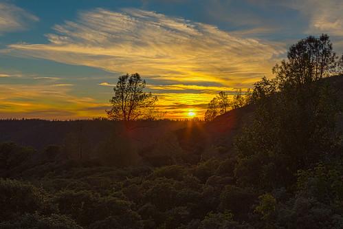 california sunset lensflare sunrays foresthill digger manzanita pineridge poisonoak placercounty diggerpine oakpine lensfl pinepoison ridgeplacer countylens flcaliforniaforesthillmanzanitasunsetdiggerpine