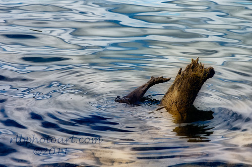water nikon scenic hdr orton waterscape