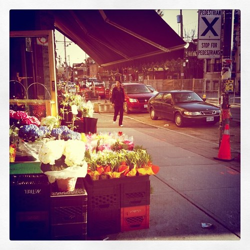 Spring (flowers for sale) on Roncesvalles | by www.tedkaiserphoto.com