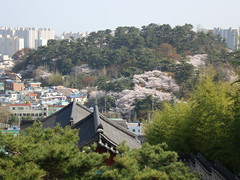Siege of Ulsan