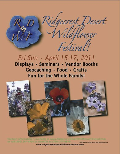 This Weekend is the Ridgecrest Wildflower Festival... | by Kahlee Spiritdancing