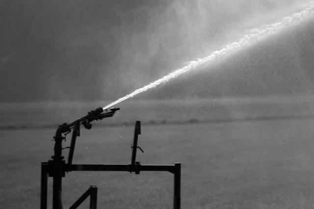 imgp2401 - Jet Spray