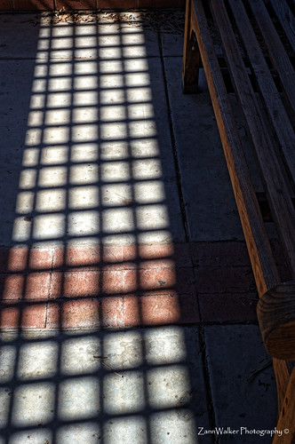 Shadows in Squares | by ZannWalker