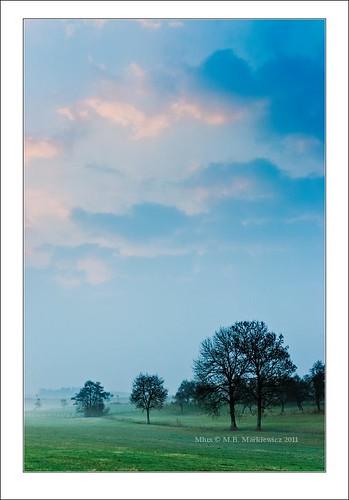 sunrise landscape golden lee hour l luxembourg paysage lux gitzo manfrotto sonnar vario gnd junglinster a900 neutraldensity gonderange sal2470za sonydslra900 2470mmf28zassm maciejbmarkiewicz sonyzeissvariosonnar247028ssm 49°411724n6°135997e