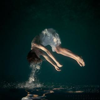 Untitled | by Elena Kalis