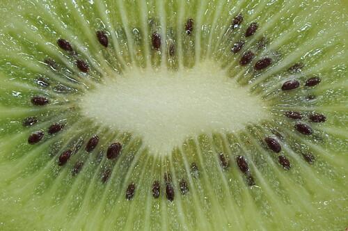 Kiwi | by PMillera4