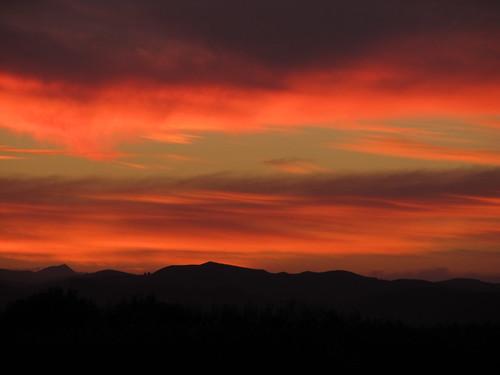 sunset gisbornevineyards