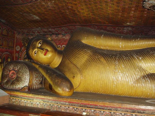 SriLanka2011 1505