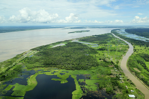 Amazon22 | by CIAT International Center for Tropical Agriculture
