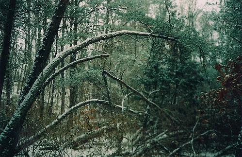 winter blacksburg fragments canonet28