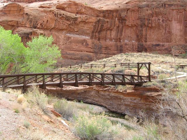 Suspension Bridge to Picnic Area