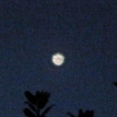 Object in the Night Sky_9384a